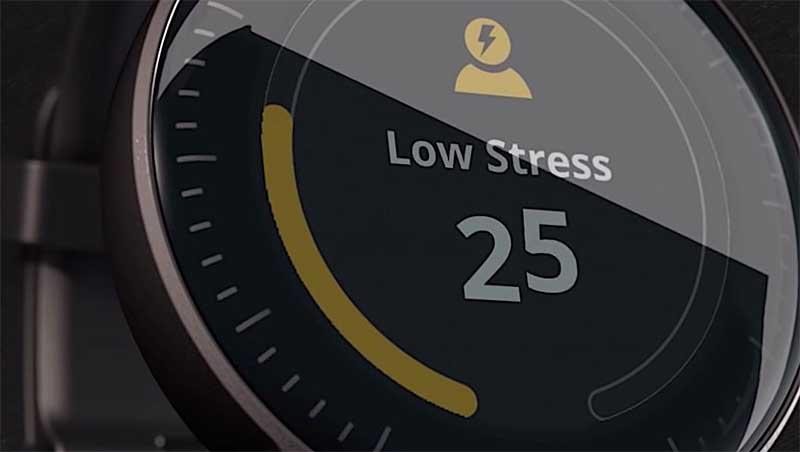 Garmin и Mercedes-Benz vívoactive 3 в 2019 году выпустят часы Mercedes-Benz Vívoactive 3