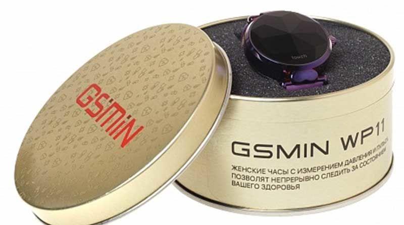 GSMIN WP11