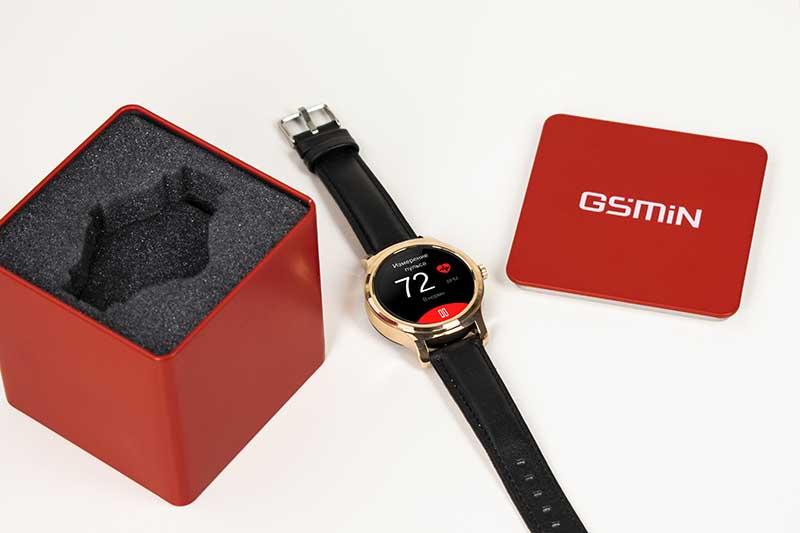 GSMIN WP5