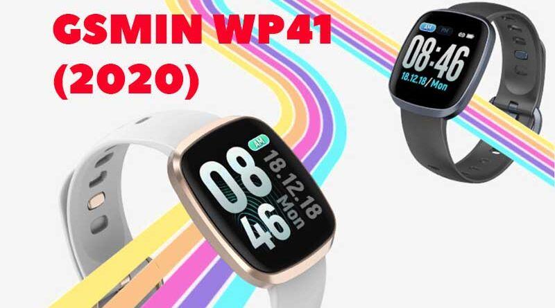 GSMIN WP41 (2020)
